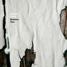 Damian Valles – Skeleton Taxa